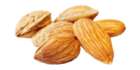 Almond-no-backg-1.png